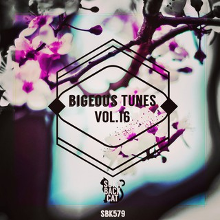 Various Artists - Bigeous Tunes, Vol. 16