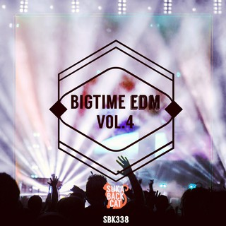 Various Artists - Bigtime EDM, Vol. 4