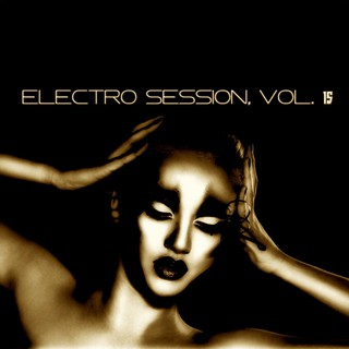 Various Artists - Electro Session, Vol. 15 (Small Size)