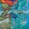Kaya Project
